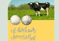 Uses Of Urea In Animal Feed