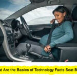 What Are the Basics of Technology Facts Seat Belts?